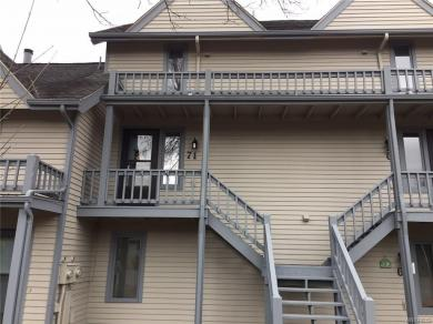 71 Wildflower Apts, Ellicottville, NY 14731