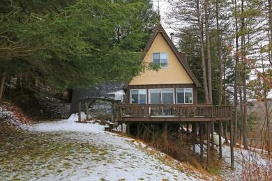 4613 Sunset Hill Rd, Machias, NY 14101