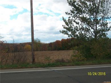 Us Route 219 Highway, Ashford, NY 14171