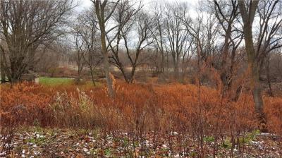 Photo of Cayuga Creek Road, Cheektowaga, NY 14227