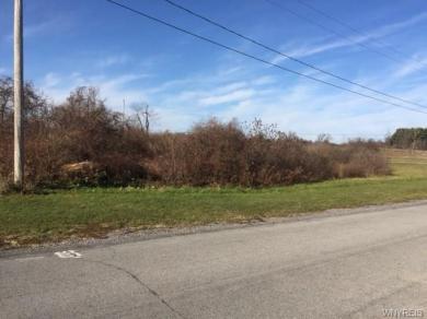 VL Schutt, Newstead, NY 14001
