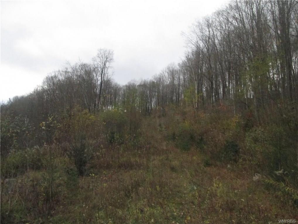 Lot 1 Eagle View Ledge (off Hencoop), Mansfield, NY 14731