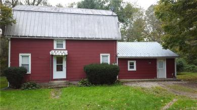 10757 Route 19, Hume, NY 14735