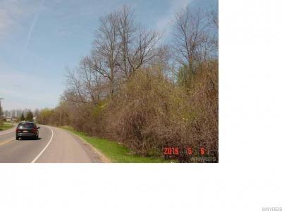 Photo of VL Saunders Settlement Road, Lewiston, NY 14092