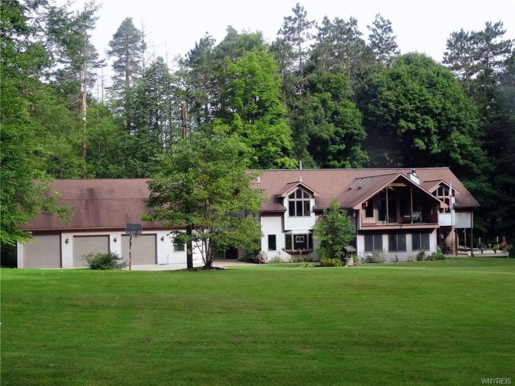 12591 Sisson, North Collins, NY 14091