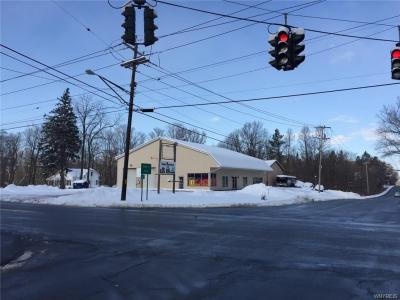 Photo of 8351 Clinton Street, Elma, NY 14059