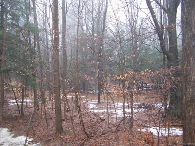 8 acres Heath Road, Colden, NY 14033