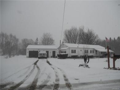 8201 Swamp Road, East Otto, NY 14719