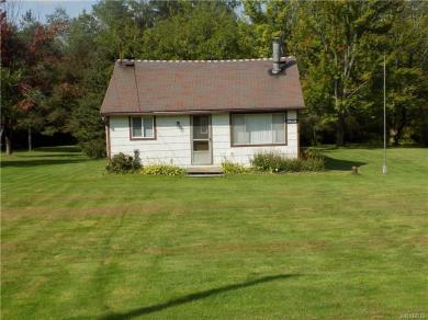 9460 South Hill Road, Colden, NY 14025