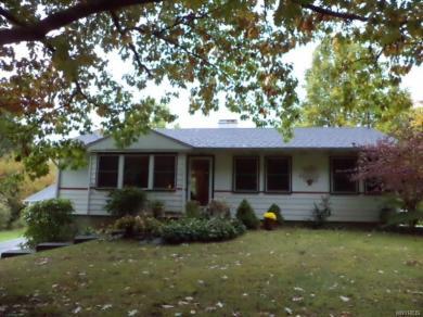 8544 Blanchard Road, Colden, NY 14033
