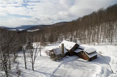 6460/6405 Witch Hollow Road, Ellicottville, NY 14731