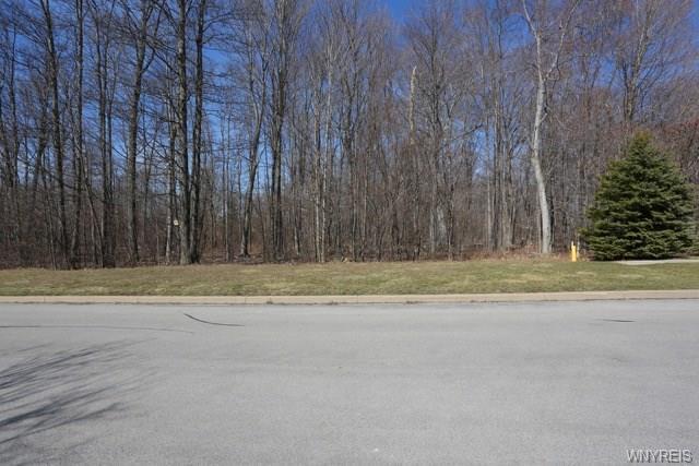13260 Maple, Alden, NY 14004