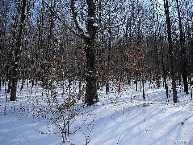 9 Creek Ridge, Ellicottville, NY 14731