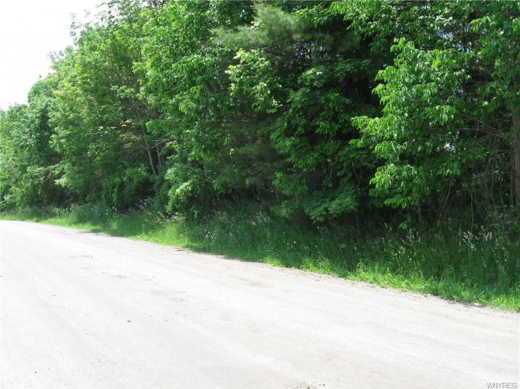 9488 Pennycook Road, Portage, NY 14846