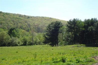 10560 Youngs Road, Cold Spring, NY 14783