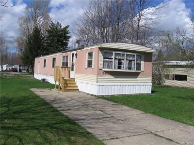 Photo of 36 Hickory, Marilla, NY 14004