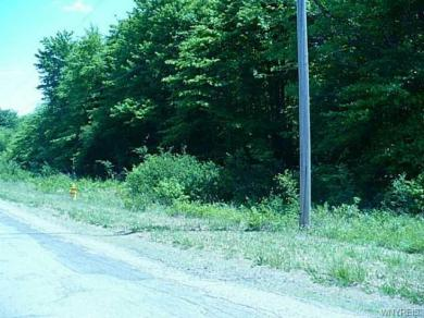6737-6736 Heltz (lots 1 & 2) Road, Hamburg, NY 14075