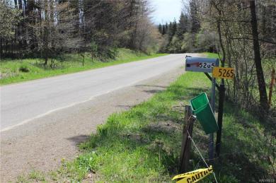 5265 Miller Hill Road, Ischua, NY 14727