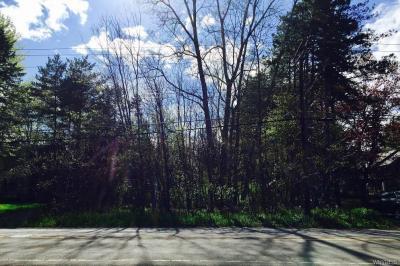 Photo of 296 Paradise Road, Amherst, NY 14051