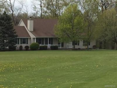 Photo of 3275 Youngstown Wilson Road, Wilson, NY 14172