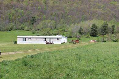 3395 County Road 6-haskell Rd, Clarksville, NY 14727