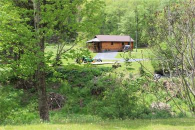 1143 Steam Valley Road, Olean Town, NY 14760