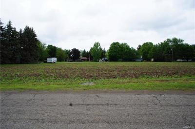 Photo of 2068 Flavia Circle, Collins, NY 14070