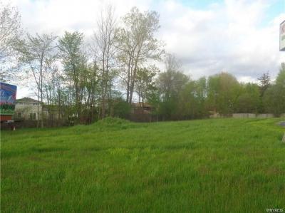 Photo of 1460 Orchard Park Road, West Seneca, NY 14224