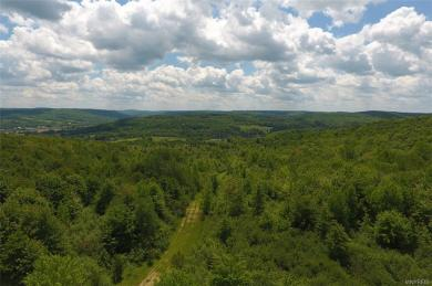No # Bakerstand Rd -198 Acres, Franklinville, NY 14737