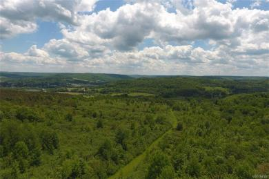 No # Bakerstand Rd- 103 Acres, Franklinville, NY 14737