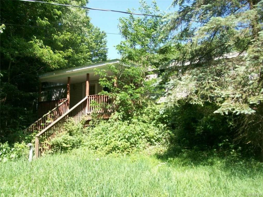 8370 Mason Hill Road, East Otto, NY 14729