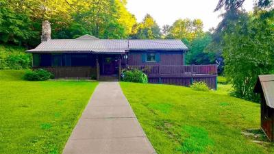 Photo of 738 Butternut Brook Road, Genesee, NY 14770