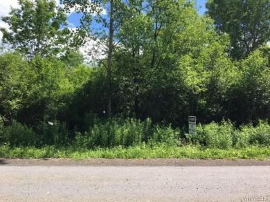 V/L Valley View Lane, Sheldon, NY 14145