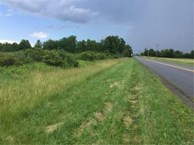 Photo of 00 Lower Lake Rd., Somerset, NY 14012