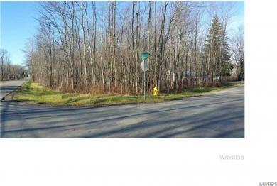 Herr Road, Evans, NY 14006