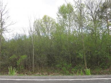 VL Love Road, Grand Island, NY 14072