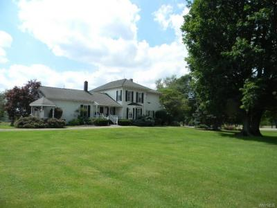 Photo of 6675 Collins Springville Road, Concord, NY 14141
