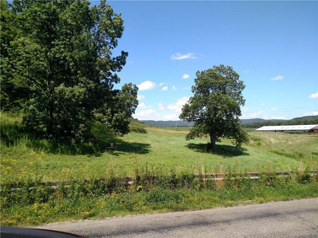 Mutton Hollow Road, Great Valley, NY 14741