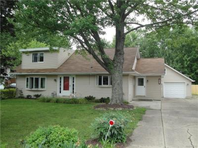 Photo of 6302 Webster Road, Orchard Park, NY 14127