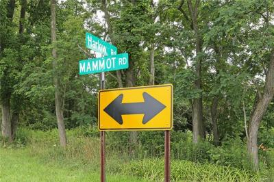 Photo of VL Mammot Road, Darien, NY 14040