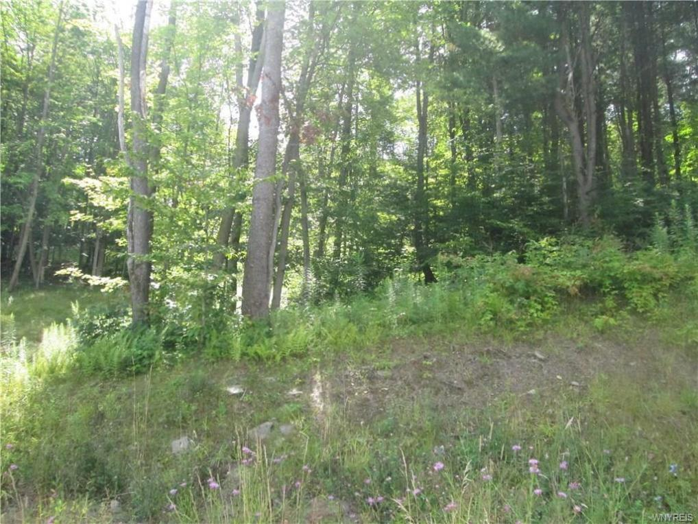 15 Westmont, Mansfield, NY 14731