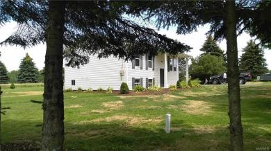 5700 Pigtail Road, Friendship, NY 14739