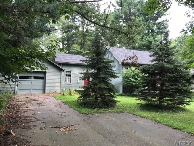 7433 Hayes Hollow Road, Colden, NY 14170