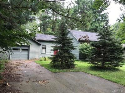 Photo of 7433 Hayes Hollow Road, Colden, NY 14170