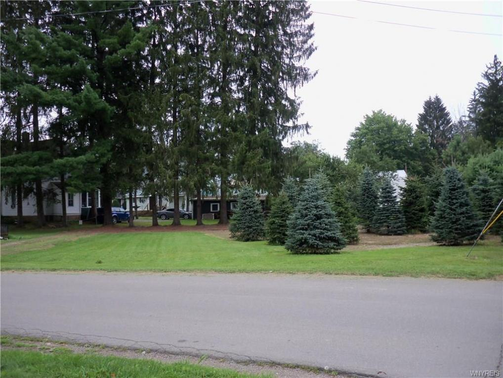 Howard Street, Franklinville, NY 14737