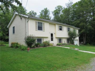 Photo of 8726 Phillips Road, Colden, NY 14080