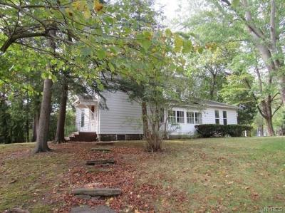 Photo of 3901 Youngstown-wilson Road, Wilson, NY 14172