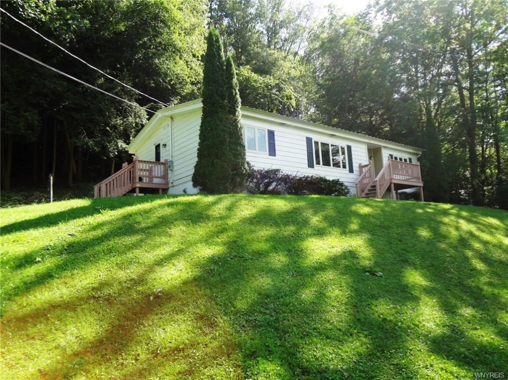 9625 Monk Hill Road, East Otto, NY 14729