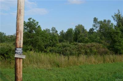 Photo of Vacant Land Ridge Road, Darien, NY 14040