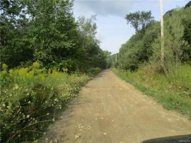 V/L Nys Route 16, Ischua, NY 14743